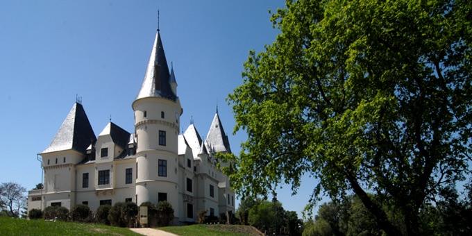slate-roof-castle-1